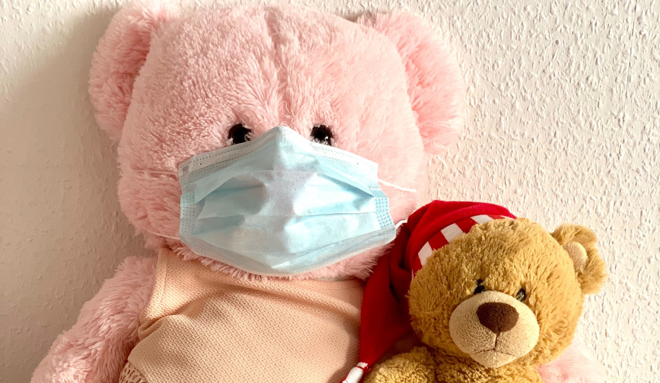 pink bear brown bear flu